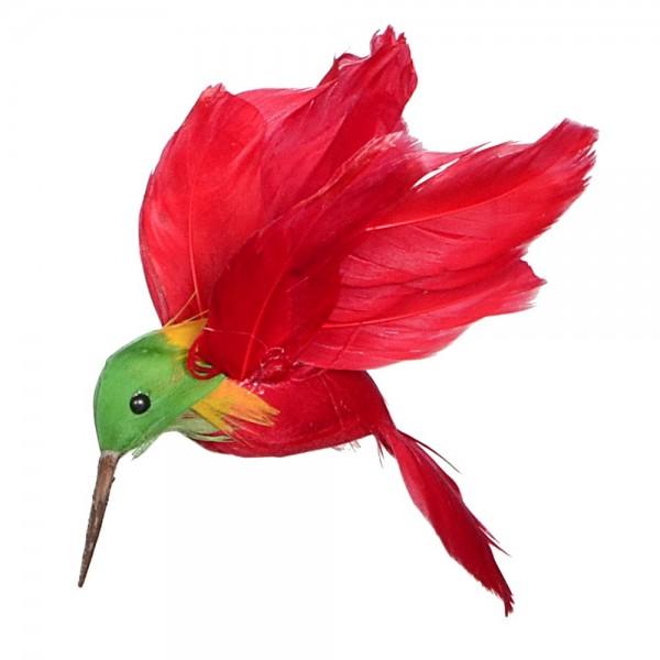 Fågel Kolibri flygande